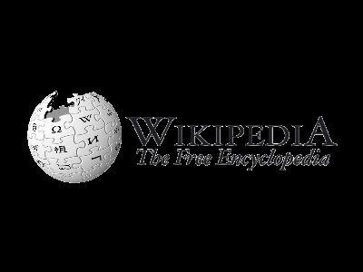 维基百科_新闻与传播资料
